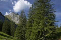 Emmetten_Swiss_2020_016
